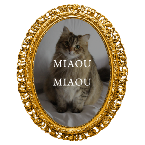 MIAOUMIAOU